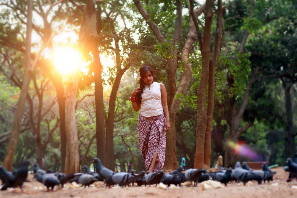 Pigeons 9 done